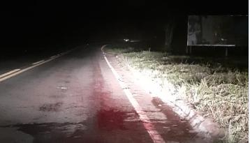 Revolta: acidente com vaca deixa motociclista ferido na MG 129 e moradores cobram punição